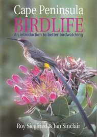 Cape Peninsula Birdlife